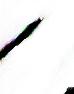 Toukagarasu27494